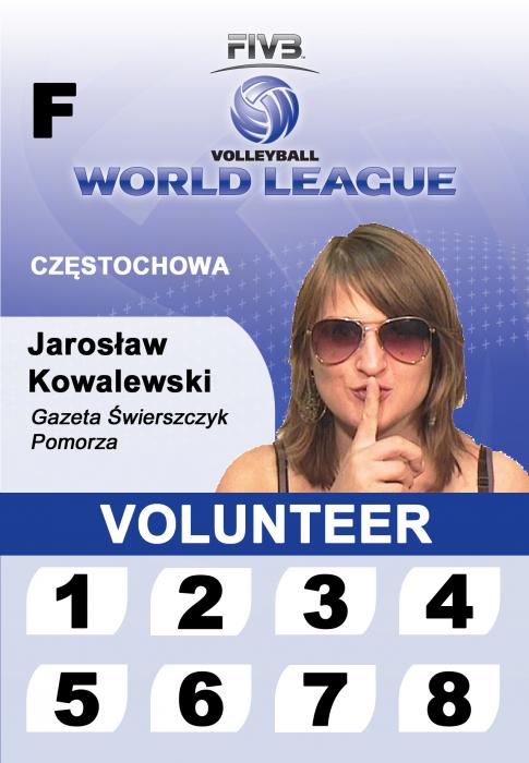 Liga Światowa Siatkówki